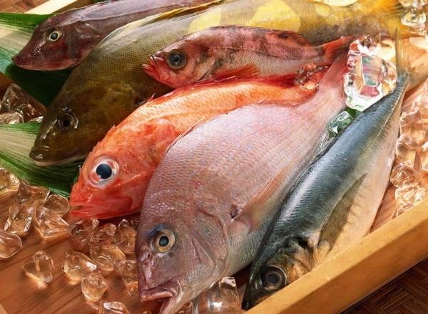 Como elejir un buen pescado