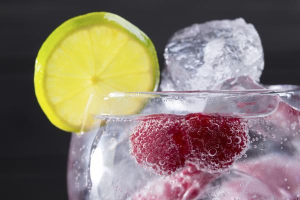 Receta de Gin Tonic